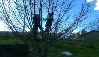Bambini acrobati  e disobbedienti alla scalata del cielo