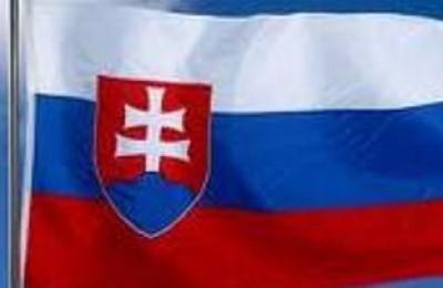 Slovacchia. Previsioni positive per il 2011