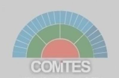Messaggio del presidente del Comites di Buenos Aires