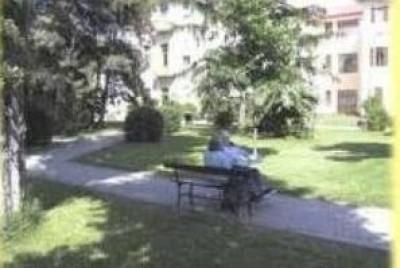 Il PD critica gli indirizzi alla Azienda Cremona Solidale