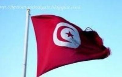 Tunisia: un anno dopo la fine dell'era Ben Ali, ancora in attesa di riforme profonde sui diritti umani