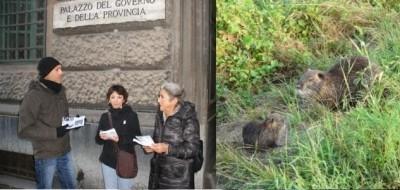 Dalla parte delle nutrie. Volantinaggio a Cremona (Video)