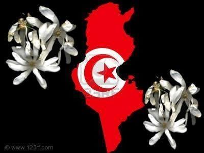 TUNISIA.IL GELSOMINO E' FIORITO.APPROVATA LA NUOVA COSTITUZIONE   Claudio Ser