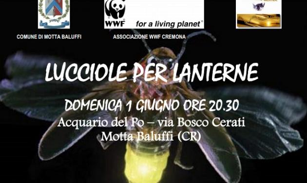 Lucciole per lanterne a Motta Baluffi.