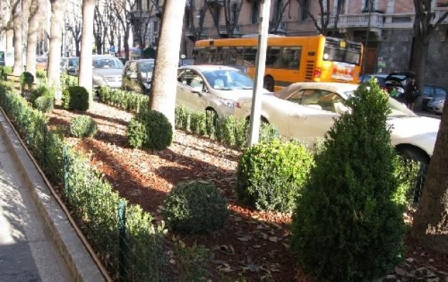Verde pubblico, a Milano 151 condomìni hanno adottato un'aiuola