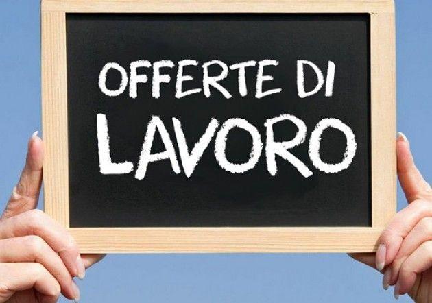 Cremona e provincia Questa settimana sono attive 33 offerte di lavoro nei Centri per l'Impiego 19.6.2015