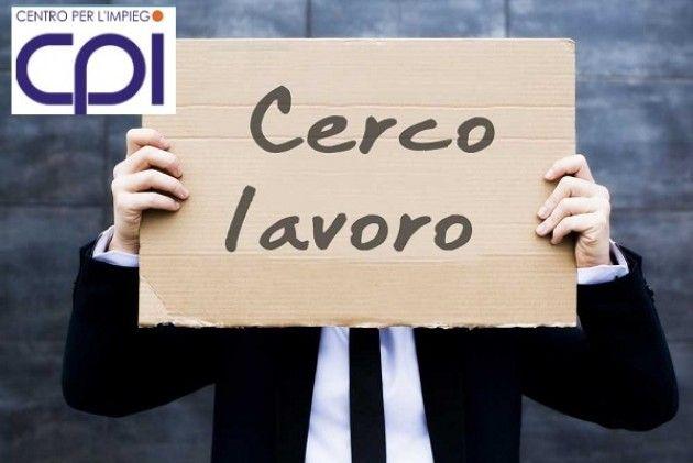 CPI Sono attive 22 offerte di lavoro e 5  tirocini nei Centri per l'Impiego di Cremona, Crema, Soresina e Casalmaggiore