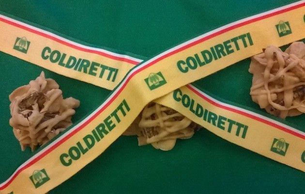 Expo Coldiretti   No ai grilli fritti e SI al super panino 'Doc' da tre metri
