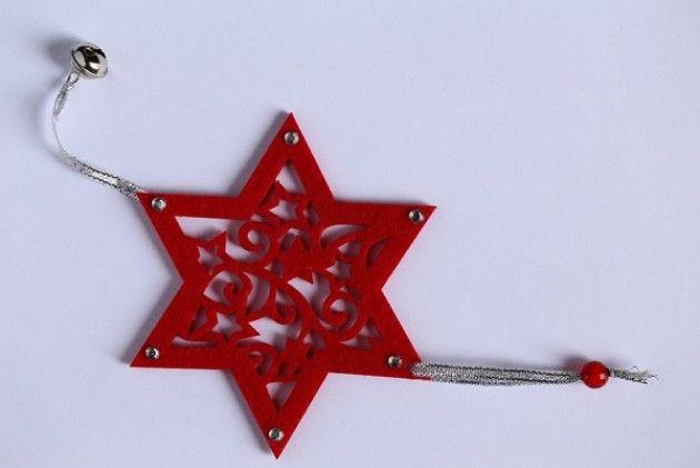 Scegli la Stella di Natale AISM. Sostieni la lotta alla sclerosi multipla