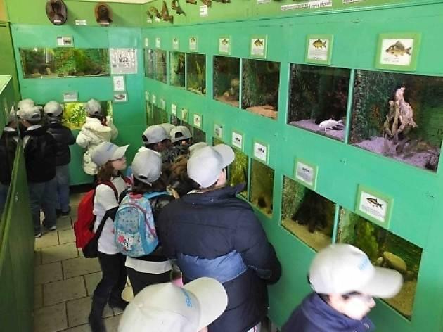 In visita all'acquario del Po di Motta Baluffi (Cremona)