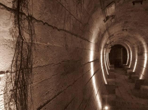 Parco Nord, Milano: 30 e 31 gennaio visite guidate Bunker Breda e altre iniziative