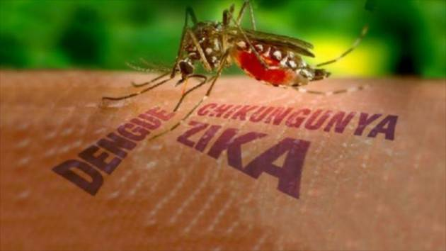Zika e meningite. Non solo Ebola.