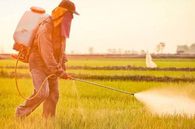Pesticidi gravemente dannosi per l'uomo, Equivita: 'Mettere fine a un genocidio'