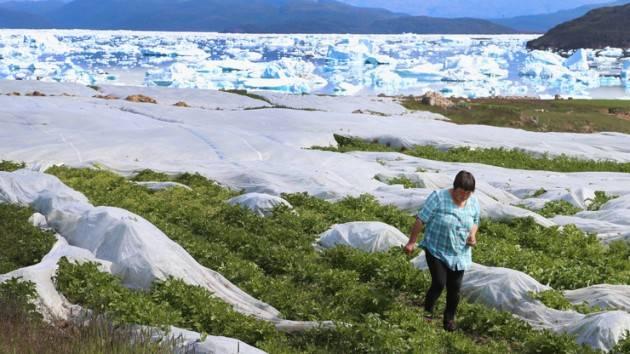 Mondo -  L'Artico si sta sciogliendo