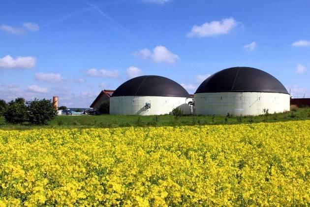 BioEnergy Italy: 70 milioni di tonnellate di FORSU in UE, solo 8 per il biogas