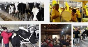 Latte, Fava: riportare trattativa a Milano