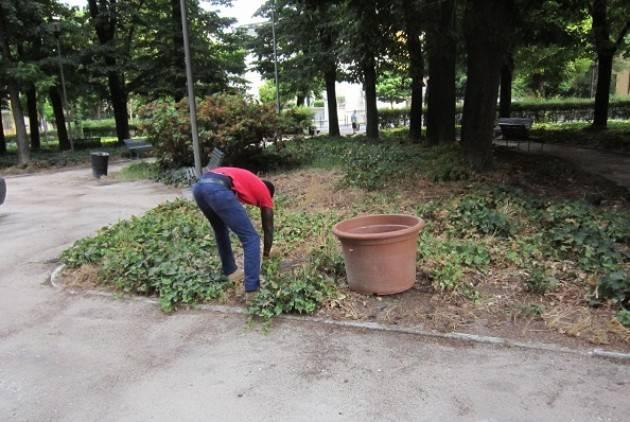 Migranti impegnati in attività di volontariato nelle aree verdi della città  di Cremona