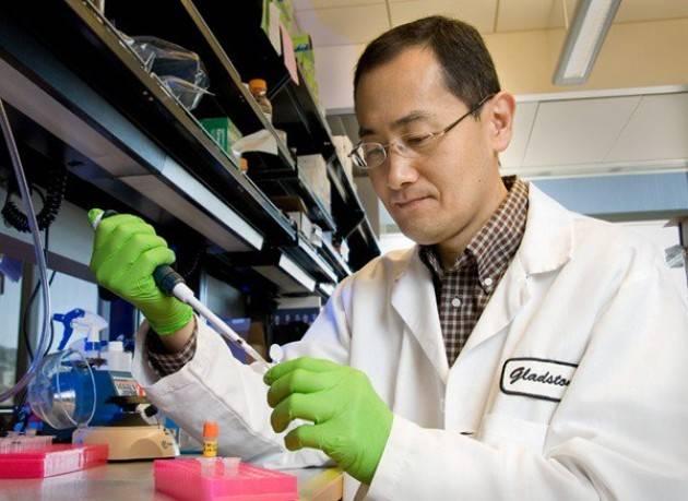Sclerosi multipla. Ricerca con le cellule staminali grazie a studi Shinya Yamanaka