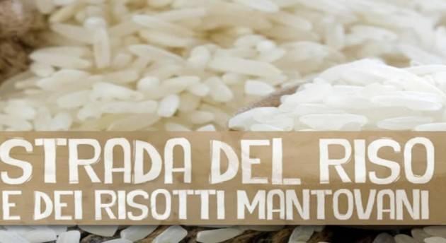 Mantova Fiera del riso Vialone nano fino a lunedì 31 ottobre