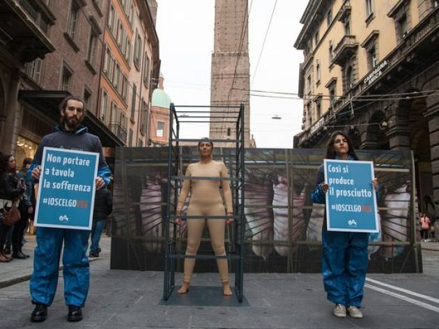 Ecco come si producono prosciutti Provocatoria installazione di Essere Animali a Bologna