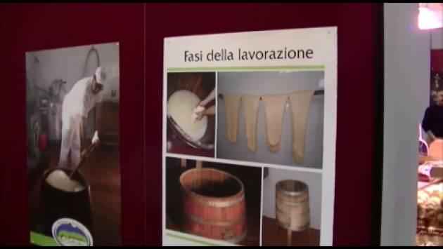 (Video)Cremona  Le 2000 specialità del Bontà 2016 . Parlano i produttori