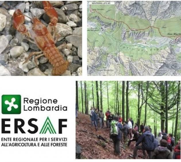 Ersaf Lombardia offre lavoro operai agricoli forestali ERSAF: requisiti e mansioni