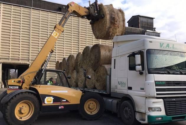 Consorzio agrario cremona in partenza il primo carico di for Consorzio agrario cremona macchine agricole usate