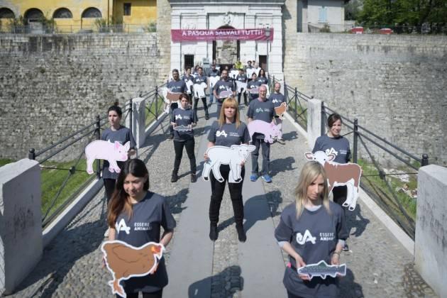 Salvali tutti animalisti in azione, esposto maxi striscione a Brescia