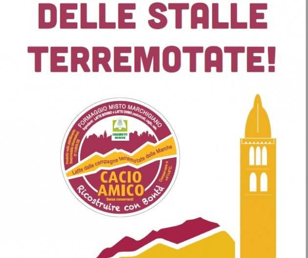 Coldiretti Cremona  'Cacio amico' domenica  30 aprile in piazza Stradivari al Mercato di Campagna Amica