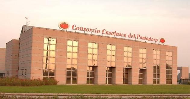 Coldiretti Cremona: Consorzio Casalasco del Pomodoro orgoglio dell'agricoltura cremonese