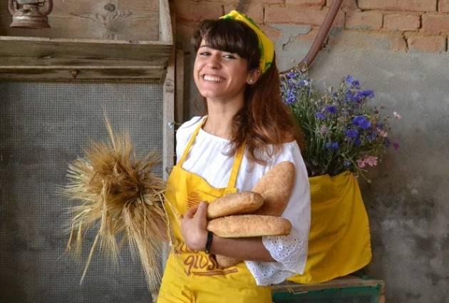 Coldiretti A Pessina Cremonese Oggi  domenica 25 ,  'giornata del grano' in agriturismo e nei mercati di Campagna Amica