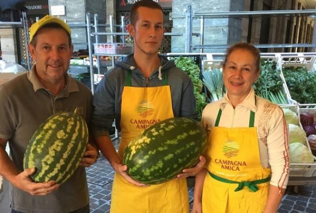 Cremona Campagna Amica: l'anguria, elisir di lunga vita
