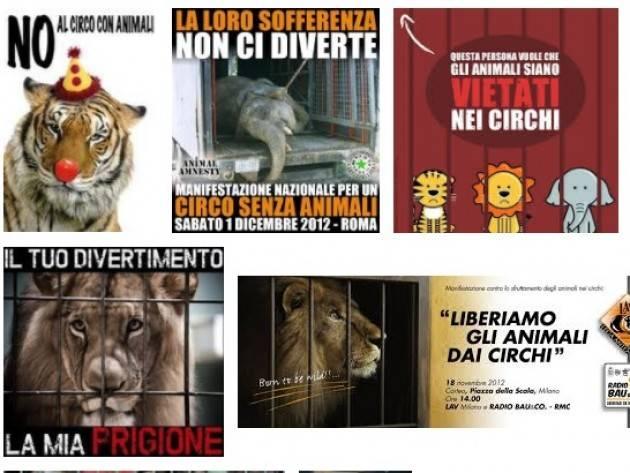 Parte la protesta per il circo con animali a Pandino