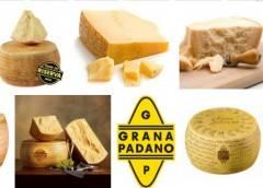 Coldiretti Grana Padano, Prandini: 'Basta doppio gioco similari'