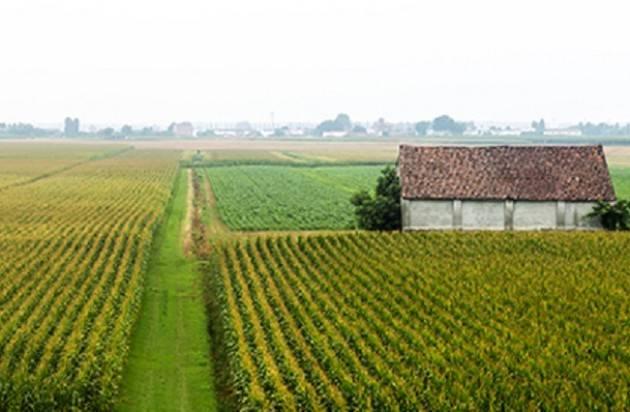 NASCE DA FILIERA AGRICOLA ITALIANA E LIDL LA NUOVA LINEA DI PRODOTTI 100% ITALIANI