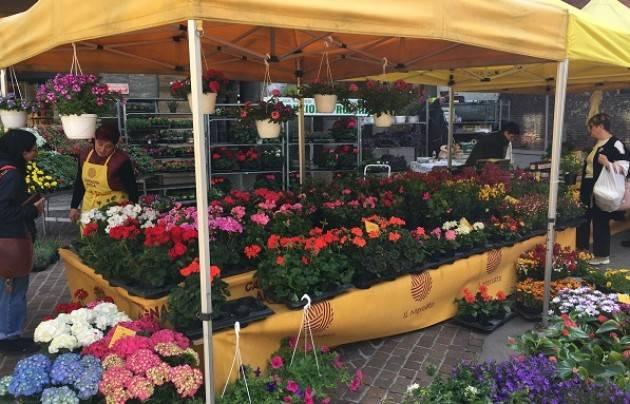 Cremona Coldiretti 'Sinfonia di fiori e sapori': la primavera protagonista  oggi al Mercato di Campagna Amica