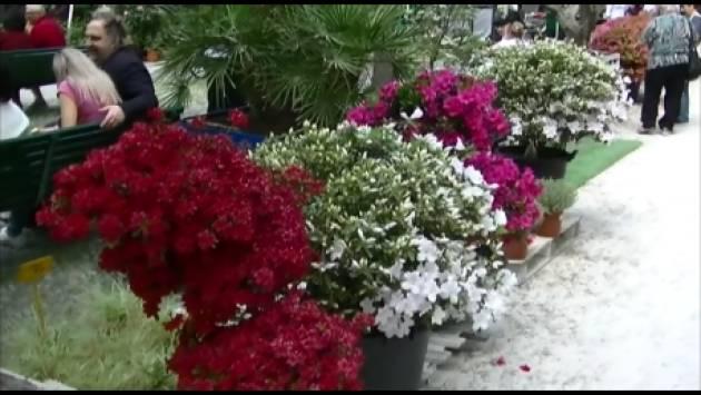 (Video) Barbara Manfredini soddisfatta per la 6° edizione delle Invasioni Botaniche a Cremona