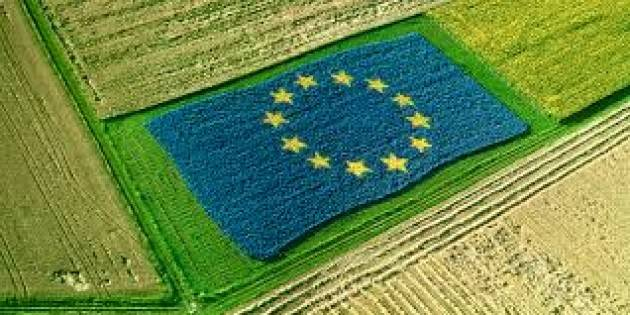 Coldiretti Bilancio UE, con -9,5% agricoltura paga conto della Brexit