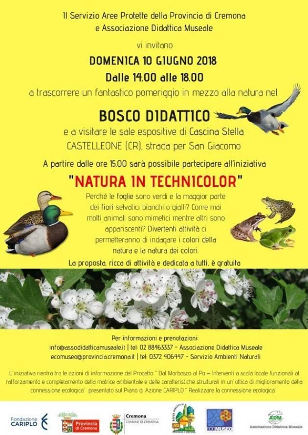 Cascina Stella e il Bosco Didattico a Castelleone aperta Domenica 10 giugno