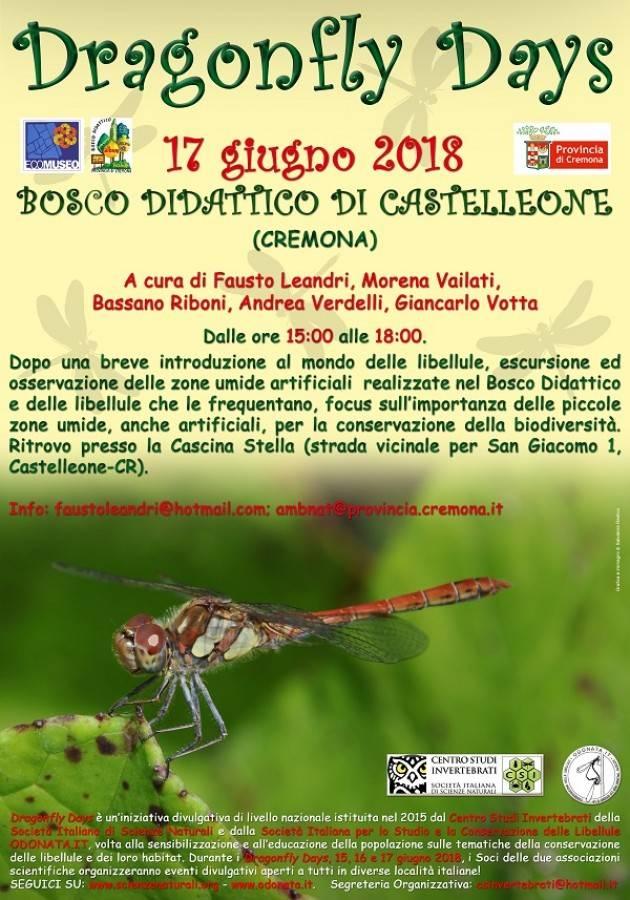 Cascina Stella e Bosco Didattico: il 17/6 è il 'giorno della libellula'