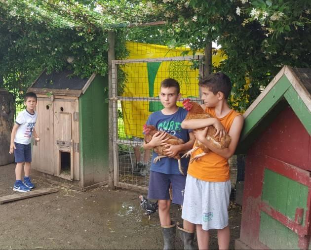 Lombardia Coldiretti Estate, arrivano gli 'agri grest' in fattoria: tra animali, orti, eco pittura e corsi in inglese