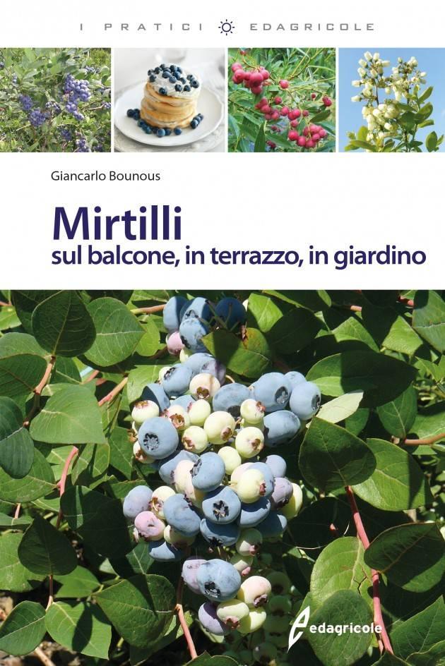 Il LIBRO MIRTILLI SUL BALCONE, IN TERRAZZO, IN GIARDINO di Giancarlo Bounous