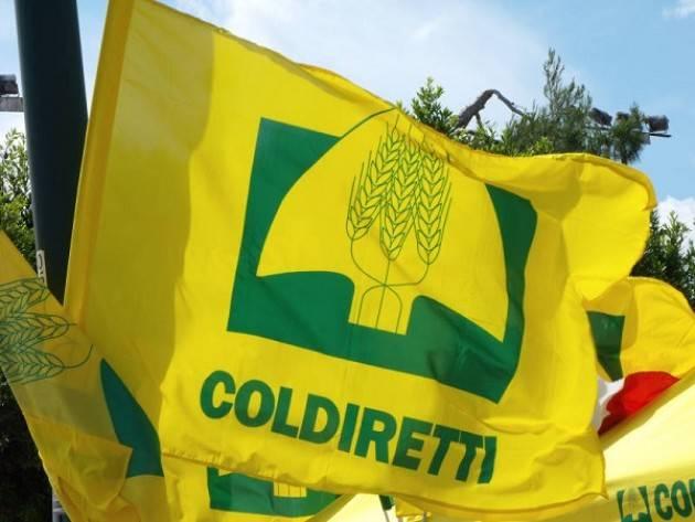 Milano: il 20 luglio Assemblea Regionale Coldiretti Lombardia