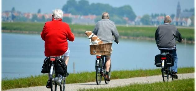 Pianeta Anziani  Puglia, una legge per l'invecchiamento attivo