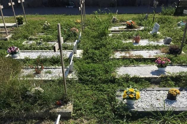 Grave incuria al Cimitero Maggiore  di Crema di Antonio Agazzi