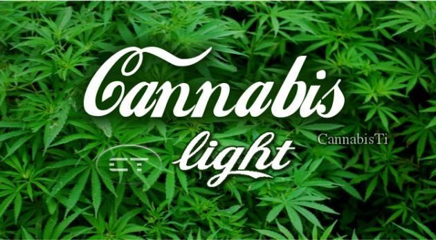 ADUC #Cannabislight e divieti. Qualcuno si farà più che male?