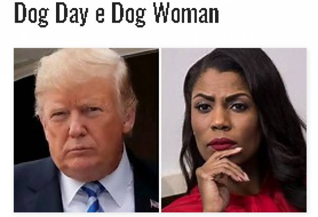 Dog Day e Dog Woman by Oscar Bartoli , Letter from Washington DC