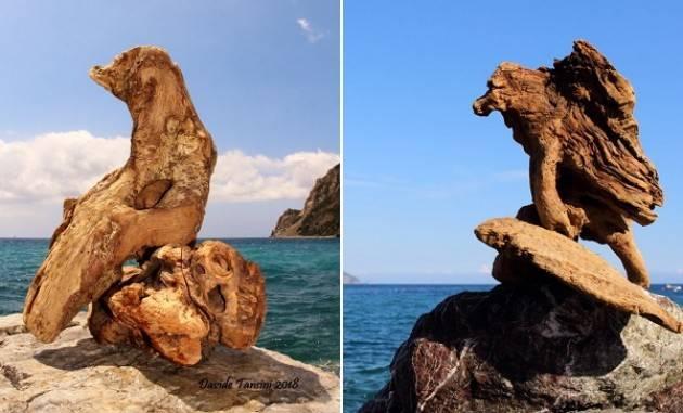 Erminio Tansini con 'Percezioni inattese'  in mostra a Porto Venere fino al 18 settembre
