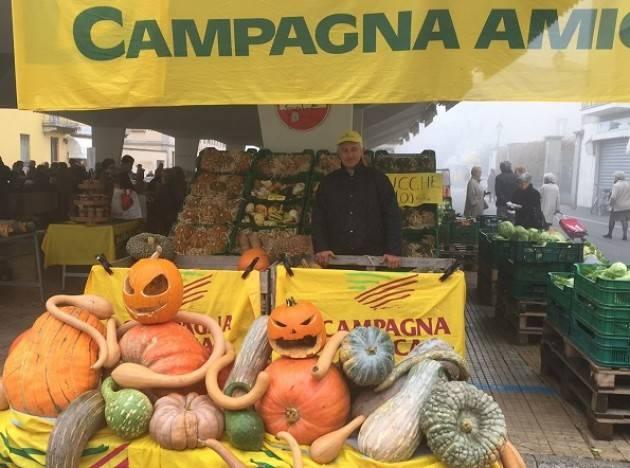 Coldiretti Domenica 30 settembre  al Mercato di Campagna Amica a Crema il 'festival della zucca' e  'l'oasi dell'uva'