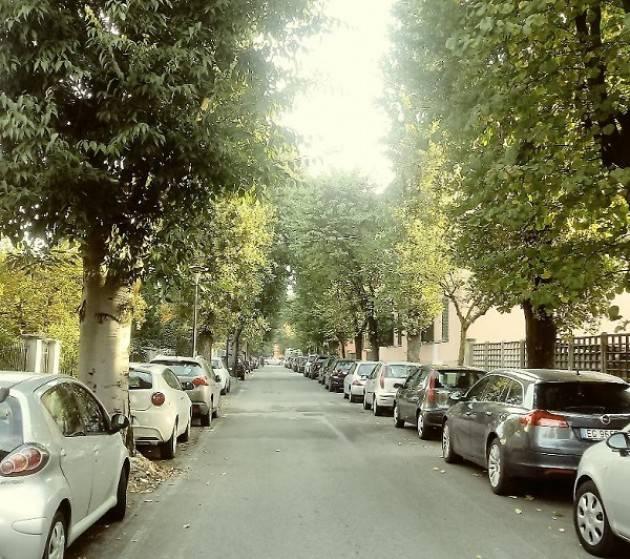 Crema: frenata sul taglio dei bagolari in via Bacchetta